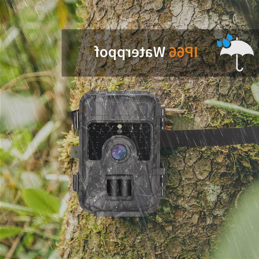 16MP Game Camera 4 Reader + 2pcs